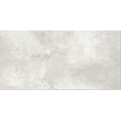 Antico silver 60x120 polished керамогранит Ceramica Santa Claus